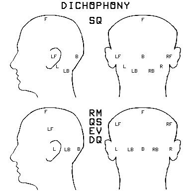 dicohead.png