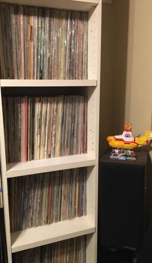 LP Shelves .jpg